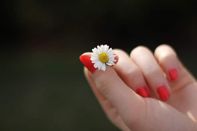 Simple Nail Designs Art