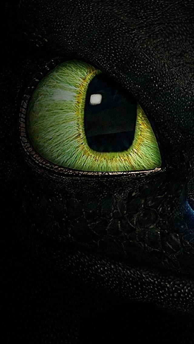 Cat Wallpaper, iPhone backgroud