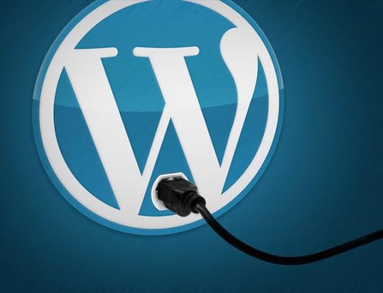 Beginner's Guide to Best WordPress Plugins