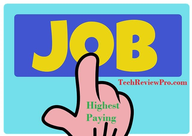 Top Highest Paying Jobs in America Search