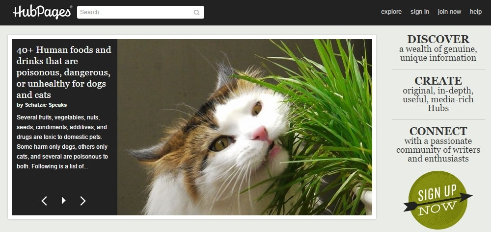 HubPages - Best Revenue Earning Blog Site to Start Blogging for Free